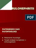 03 Glomerulonephritis