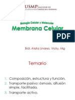 Membrana Cel 1