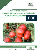 Sperimentazione Pomodoro da Industria