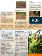 budidaya_jagung.pdf