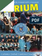 Castleknock Community College - Atrium 2013