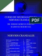 2 NERVIOS CRANEALES