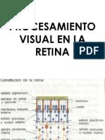 Procesamiento Visual en La Retina