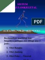 Sistem Muskuloskeletal Faal Dr Sony