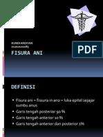 FISURA ANI.ppt