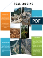 Poster of Illegal Logging