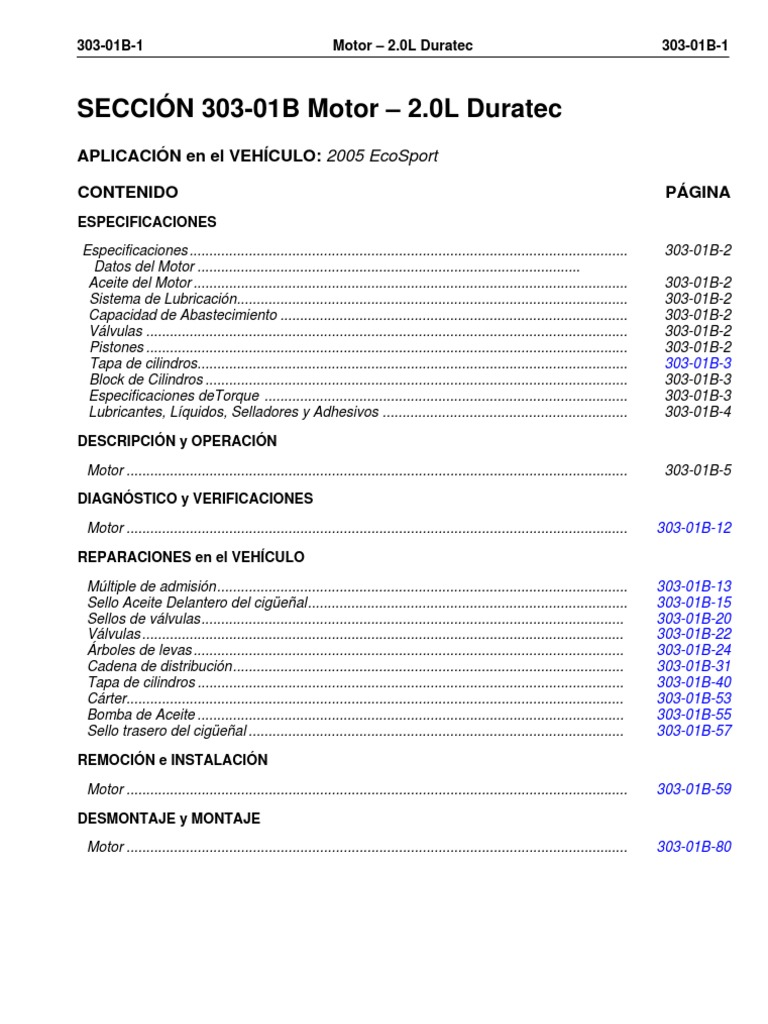 Motor 2 0l Duratec