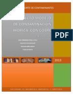 Modelo de Contaminacion Hidrica Con Cobre j