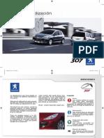 Manual 307.pdf