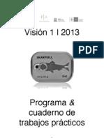 Vision1 Programa 2013