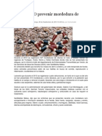 08/09/13 nssoaxaca Exhorta SSO prevenir mordedura de víboras