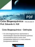 Ciclos Biogeoquímicos – Ficha de estudo 69