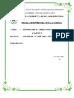informecompleto de procesamiento minimo.docx