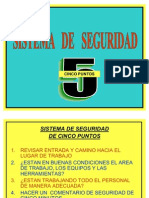 5 Puntos Presentacion