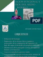 2.Medio Int. Fis. Cel.