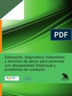 437 Evaluacion Diagnostico Tratamiento y Servicios de Apoyo Para Personas Con Discapacidad Intelectual
