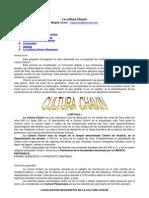 chavin.pdf