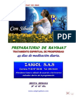 o6-Tratamiento 49 Dias de Prosperidad-sexto Manual