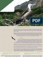 Monumento Natural das Ilhas Cagarras