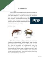 Artikel Crustacea