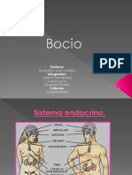 Bocio 3