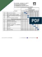 Cronograma (2).docx