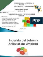 Industria Del Jabon
