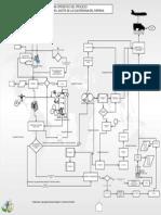 Gestion de Produccion en Un Diagrama de Operacion de Paprika y Oleoresina