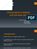 Clinical Spinal Instability and Low Back Pain Final