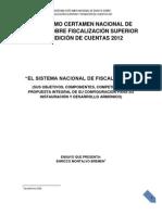 Sistema Nacional de Fiscalizacion Ensayo