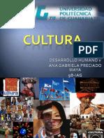 Cultura Gaby