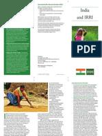 India and IRRI