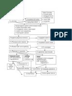 patofis hipertensi