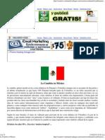 La Cumbia en Mexico.pdf