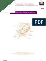 MECANISMO DE TRABAJO DE PARTO UNAM.pdf