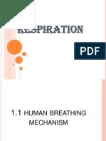 48009645 Respiration Form 3
