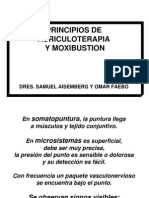 Auriculoterapia y Moxibustion - Dr Faebo