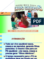 08 - MULTIPLICAÇÃO DOS PGs