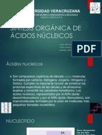 Omar Organica III