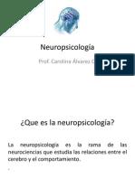 Neuropsicología del aprendizaje