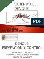 Conociendo El Dengue II