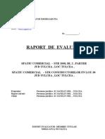 RAPORT satelit 2010.doc