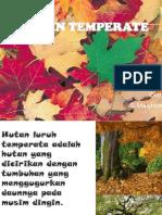 Hutan Temperate