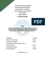Proyecto Hongo Pleurotus en Aldea La Cienaga, Cabrican, Quetzaltenango