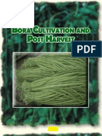 Bora_Cultivation_and_Post_Harvest.pdf