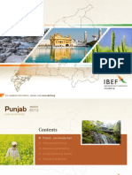 Punjab State Economic and Business Fact file ,India