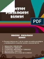 Procesos Psic Basicos Sensacion y Percepcion