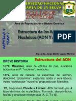 GENÉTICA IV - 1 Estructura de los acidos nucleicos
