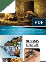 Normas Dengue
