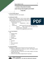koagulasi (Kimia)